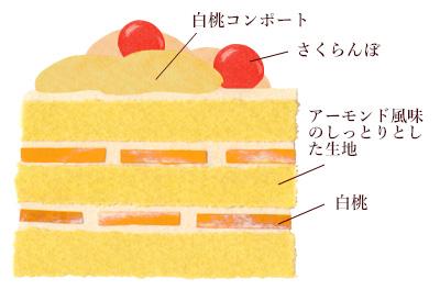 季節のケーキ「白桃のショートケーキ断面図イラスト」